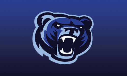 bear head logo 1