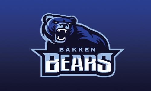 bear logo 2