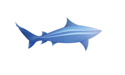 modern shark logo