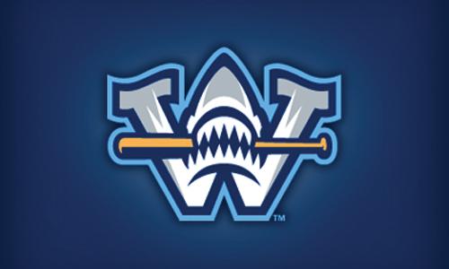 shark baseball logo